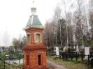 Сидоровское кладбище_11