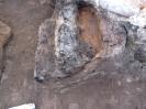 Раскопки в г. Йошкар-Оле на кладбище при Входо-Иерусалимской церкви 2010 г._66