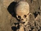 Раскопки в г. Йошкар-Оле на кладбище при Входо-Иерусалимской церкви 2010 г._91