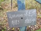 Семеновское (старое) кладбище_13