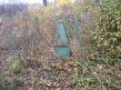 Семеновское (старое) кладбище_172