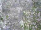 Семеновское (старое) кладбище_176