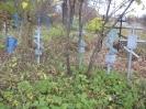 Семеновское (старое) кладбище_18