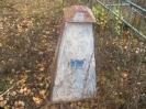 Семеновское (старое) кладбище_217