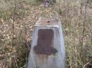 Семеновское (старое) кладбище_226