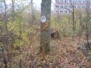 Семеновское (старое) кладбище_32