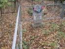 Семеновское (старое) кладбище_6